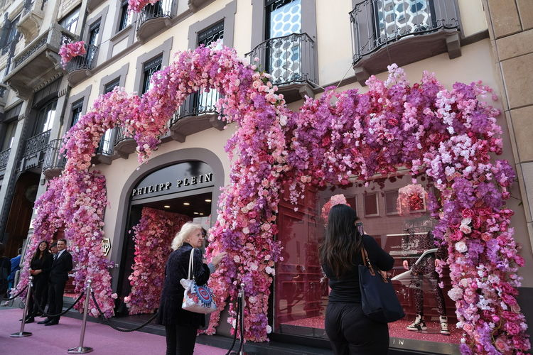 Pink flowering plants by building in city