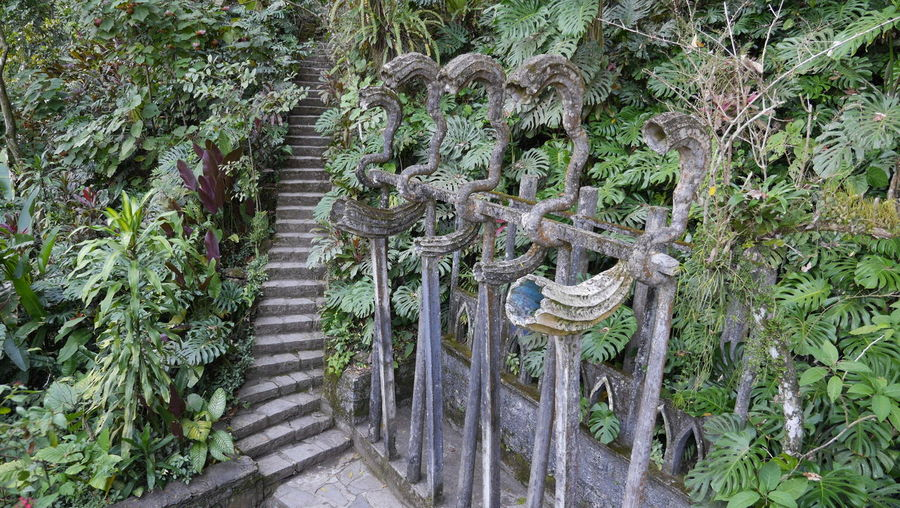 Xilitla ruins Beauty Of Decay Decay Ruins Architecture Beauty In Nature Decayed Beauty Jungle Nature Outdoors Ruins Architecture Surrealism Surrealism Photography Tranquility