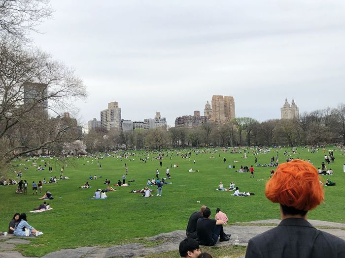 Central Park New York ❤ New York Group Of People Crowd Real People Large Group Of People Sky Architecture My Best Photo Women Leisure Activity Men Plant Day Lifestyles Rear View Adult Park Nature Built Structure Tree City Outdoors