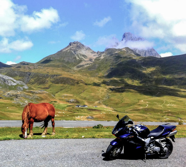 Animal Themes Beauty In Nature Cloud - Sky Day Domestic Animals Horse Landscape Mammal Motorbike Motorcycle Mountain Mountain Range Nature No People One Animal Outdoors Sky