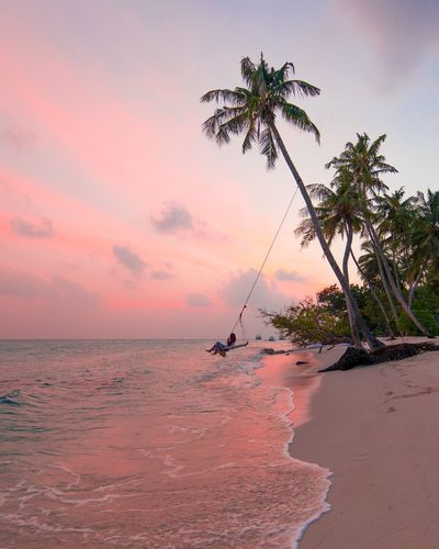 Swinging all worries away. Palm Tree Sea Scenics Beach Tranquil Scene Sand Nature Beauty In Nature Water Tranquility Sky Horizon Over Water Sunset Tree Outdoors No People Day maldives