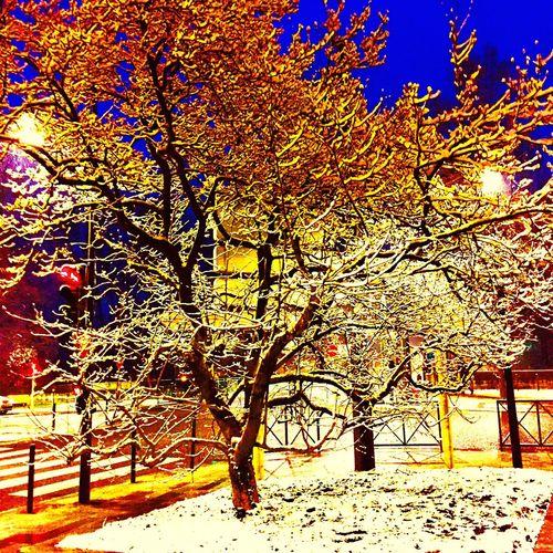 Besancon Snow ❄ Franchecomte