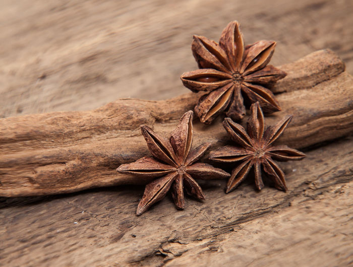Close-up of star anise on wood