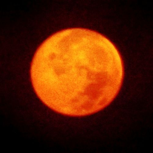 Moon Full Moon Orange Color Night No People Outdoors Nature Close-up RedMoon🌑 Redmoon Fullmoon Full Moon Full Moon Night  Full Moon 🌕 Full Moon Night  No People 😇😇😇 No People Outdoors Moon Moonlight Egypt Moon Light By Myself Full Moon Night  No Person No Poeple