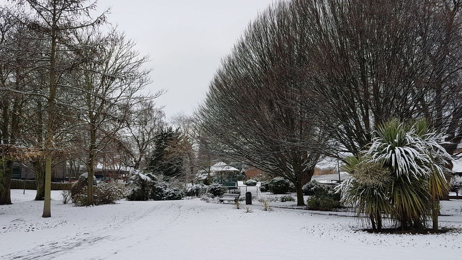 Stafford Victoria Park Snow Winter Wonderland Winter Landscape Check This Out Hello World Taking Photos Beauty In Nature Beautiful Snowing White Park Christmastime #christmas 2017 2017 December Tree Beauty In Nature