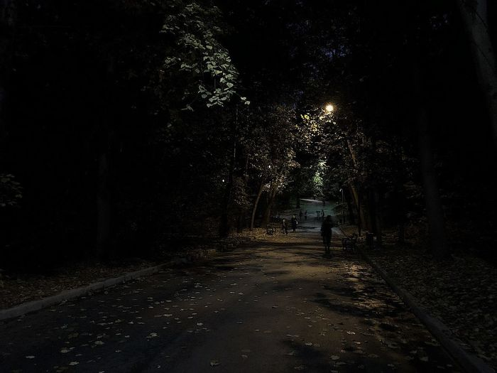 View of person walking on road at night