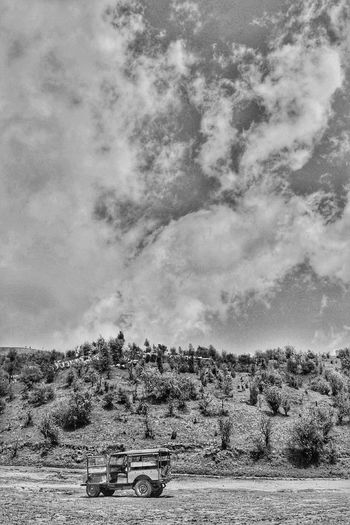 Darjeeling Sandakhpu Landscape Nature Outdoors Cloud - Sky Tree Day Food LandRovers Landroverdiscovery Landroverlove