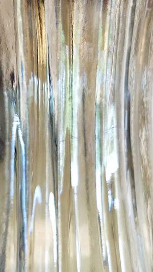 Looking Through Glass Vase