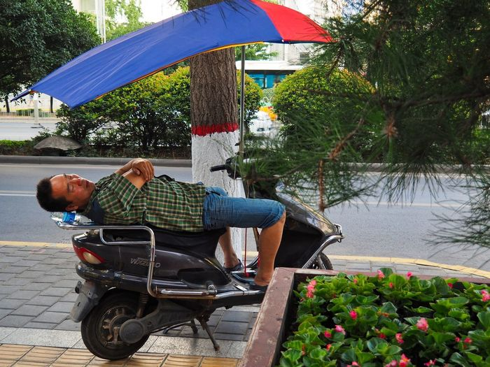 Nap Time Environmental Portraits Sleeping Man Xi'an China Adult Asian Male Break Time Casual Clothing Day Escaping The Heat Land Vehicle Mode Of Transportation Mopeds Nature One Person Outdoors Street Photography Taking A Nap Tree Urban Setting