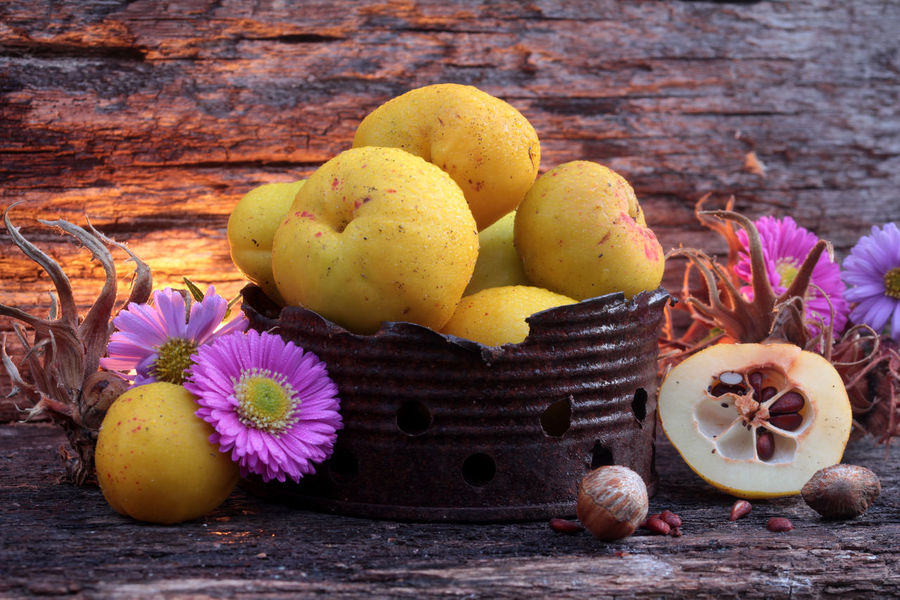 Nostalgia Rustic Still Life Antique Candlelight Chaenomeles Close-up Flower Four Objects Freshness Group Of Objects Herbstaster Honey Apple Large Group Of Objects Multi Colored Natural Materials Nostalgic  Ornamental Plants Pome Fruit Purple Quinces Still Life Thorn Tree Hazel Wild Fruit