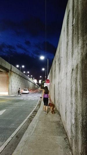 Doggy walking |