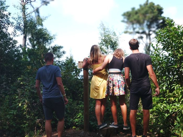 Tenerife Island Friendship Tree Young Women Togetherness Men Party - Social Event Bonding Women Happiness Standing Organized Group Photo Arm In Arm My Best Travel Photo