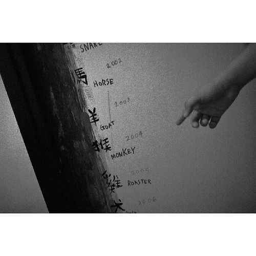 Wall markings | GRdigital4 | Tst Hk Chinesezodiac