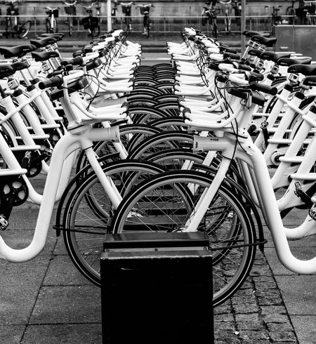 Bicycle Day Mode Of Transport No People Parking Transportation Urban Wheel