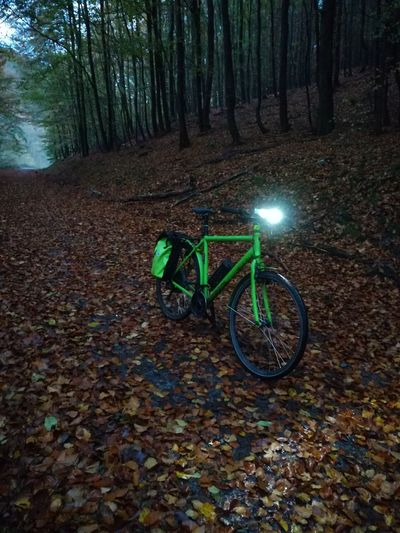 No Filter, No Edit, Just Photography No Filters Or Effects No Filter No Edit No Filters  E-bike Pedelec Bicycle Transportation Night No People Stationary Tree Outdoors Nature Illuminated