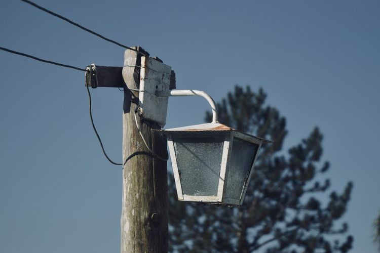 Birdhouse Blue Cable Clear Sky Day Electricity  Focus On Foreground Hanging Lighting Equipment Low Angle View Nature No People Outdoors Plant Pole Power Supply Sky Sunlight Technology Tree Wood - Material