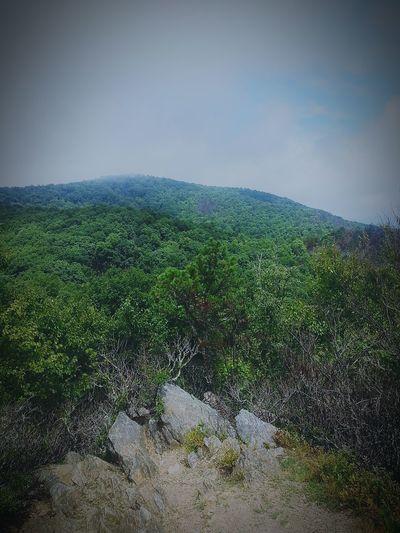 I will miss you North Carolina Ridgecrest Blackmountain