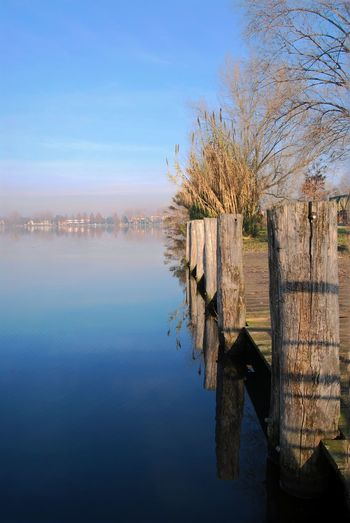 Nature Sky Beauty In Nature Outdoors Tranquility Tranquility Day Water Nature Reflection Tree Beauty In Nature No People Tranquil Scene Waterfront Scenics Clear Sky Mantova Mantua