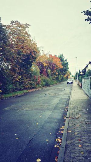 Fluchtpunkt Colors Of Autumn Street