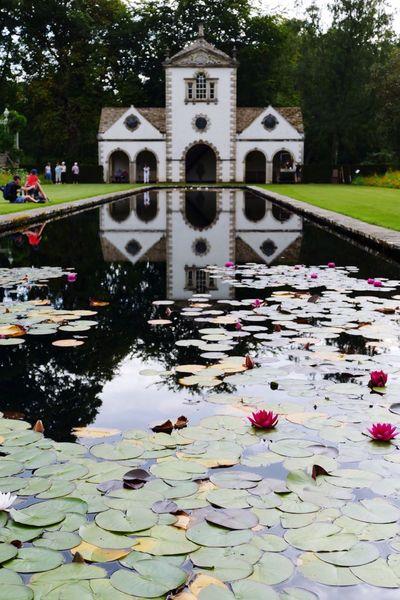 Architecture Water Architecture Built Structure Pond Lily Pond Lilypads Landscape_Collection Landscape