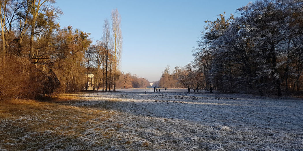 Nymphenburg Park Bavaria Castle City Dawn Day Dusk Frost Hoar Frost Lake Munich Nature Outdoors Park Pond Sky Sunset Tree