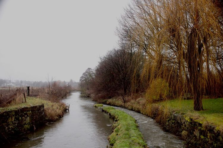 bare trees, small river for sad people Beauty In Nature Gray Weather Nature No People Outdoors Sky Small River In Town Tranquil Scene