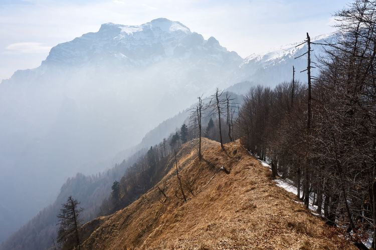 The wild and inaccessible east face of Mt. Serva looms over the grassy ridge bordering the Forest of Cajada. Dolomites, Italy Lonely Quiet Places Trees Winter Landscape Majestic Mist Snow Wilderness Wistful