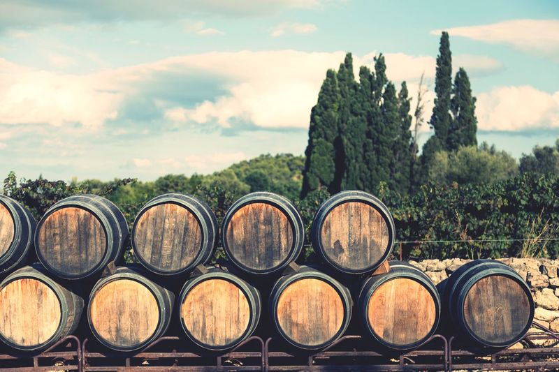 Barrels EyeEm Selects Barrel Wine Cask Stack Wine Winemaking Winery Cellar Wood - Material In A Row Wine Cellar No People Cloud - Sky Industry Sky Day Alcohol Large Group Of Objects Arrangement Tree Outdoors