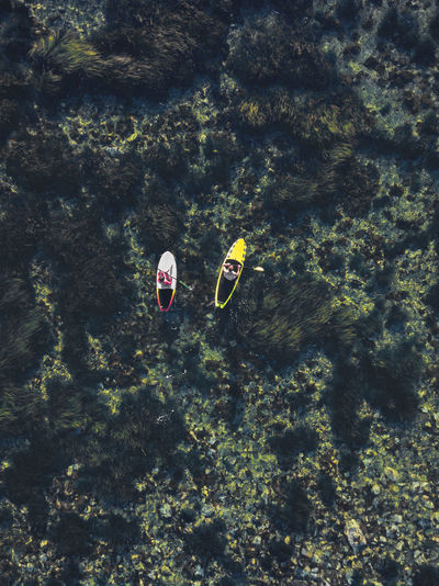 High angle view of people by sea