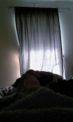 i love these curtains they block out the light lmaoo Just Chillin'