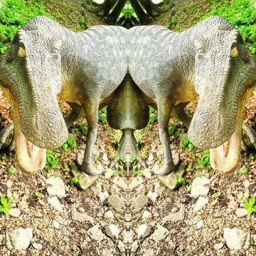 Day No People Dino DinoPark JurasicPark Monštrum Nice Daytime