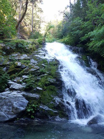 EyeEmNewHere Outdoors Water Tree Nature Beauty In Nature Waterfall