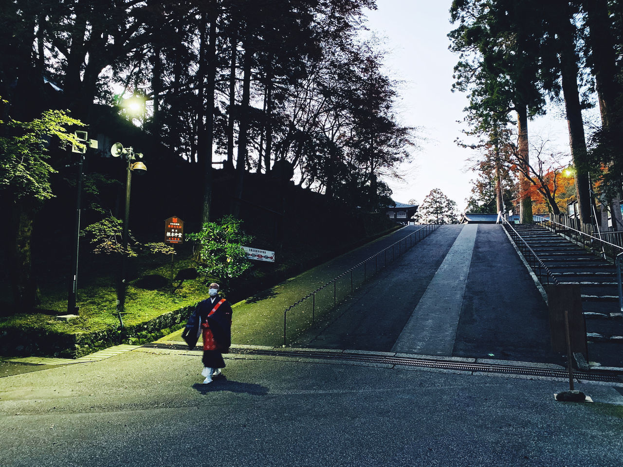 REAR VIEW OF MAN WALKING ON ROAD BY TREES