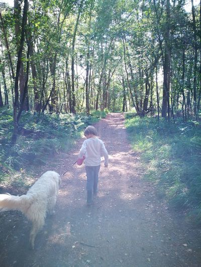 No Filters Or Effects Nature Photography Hanging Out Dog❤ Boy And Dog Woods Sunlight Breathing Space