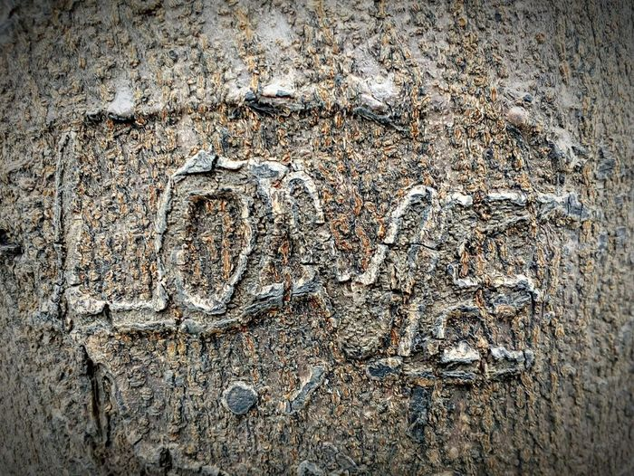 Love Love ♥ Embossed Embossing On Tree Tree Mobilephotography Mobile Photography Textured  Outdoors Close-up No People Nature Backgrounds Full Frame Creativity