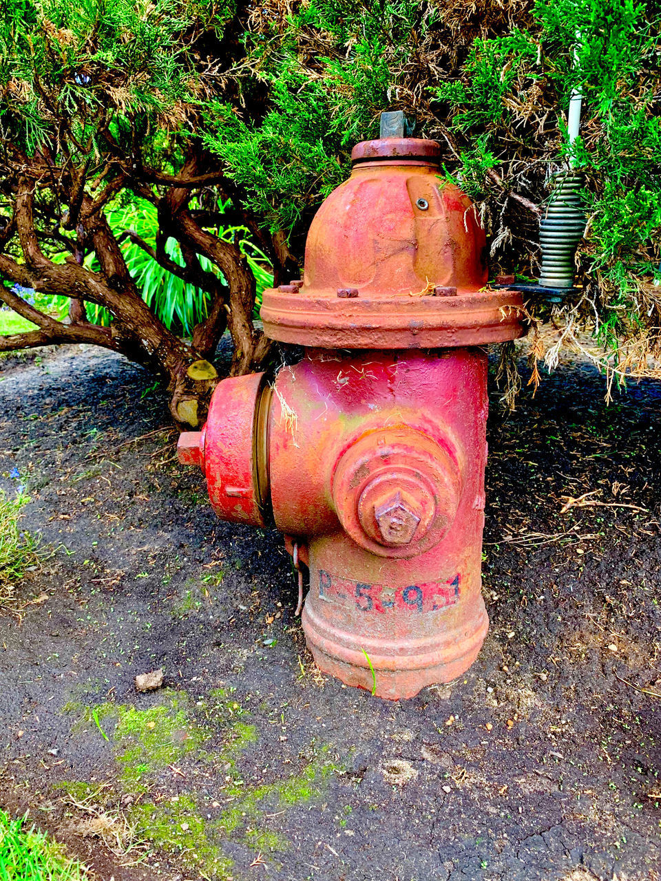 ABANDONED FIRE HYDRANT ON FIELD