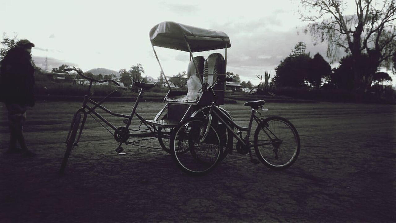 bicycle, transportation, land vehicle, tree, mode of transport, stationary, outdoors, sky, day, no people, bicycle rack, nature