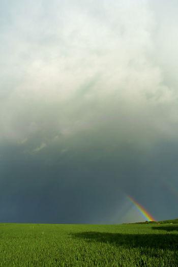 Beauty In Nature Cloud - Sky Day Dramatisch Cloud Grass Green Field Grünes Feld Landscape Nature No People Outdoors Piece Of Rainbow Rainbow Sky Regenbogen Sky Surreal