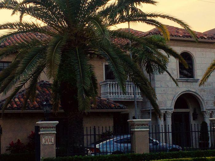 FtLauderdale Middleriver Beautiful Florida House Tropical Setting MeinAutomoment