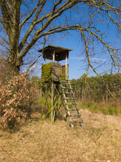 Architecture Building Exterior Built Structure Day Field Forest Grass Hunter Seat Hunting Hut Ladder Land Landscape Nature No People Outdoors Plant Scenics - Nature Sky Tranquil Scene Tranquility Tree Wood - Material