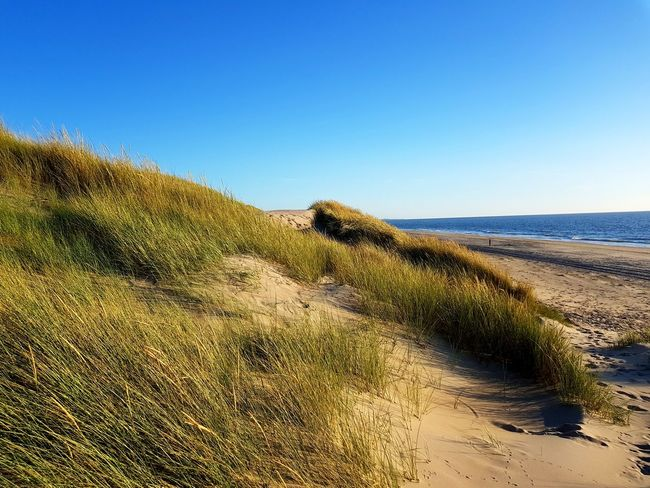 Sand Sand Dune Beach Nature Sea Sky Beauty In Nature Clear Sky Blue Sky Blue Water Landscape Horizon Over Water Traces In The Sand Tranquility Island North Sea Netherlands The Week Of Eyeem EyeEmNewHere EyeEm Best Shots Breathing Space Your Ticket To Europe Been There.