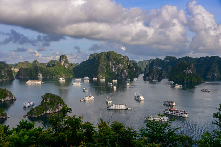 Halong Bay Vietnam Halong Bay Vietnam Halong Bay  Halongbay Vietnam Animal Themes Beauty In Nature Bird Cloud - Sky Day Lake Mode Of Transport Mountain Nature Nautical Vessel No People Outdoors Scenics Sky Swan Transportation Vietnam Travel Vietnam Trip Vietnamphotography Vietnamtravel Water Waterfront