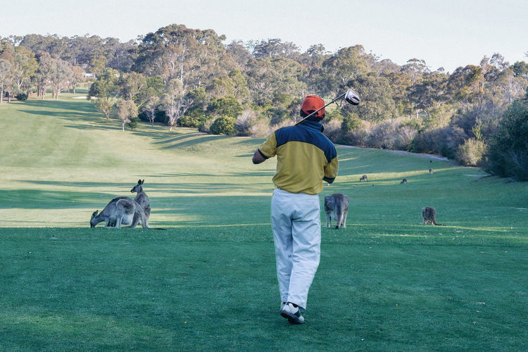 Australia Field Golf Golf Course Grass Holiday Scenic Day Fairway Golfer Kangaroo Landscape Leisure Activity One Person Outdoors Rear View Sport Tee Box Vacation My Best Travel Photo