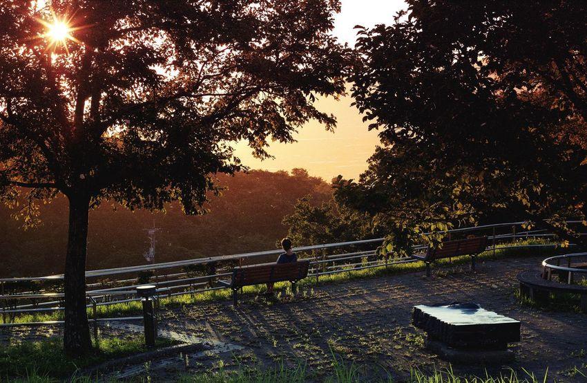 // Ohayou Gozaimasu // Mextures The Traveler - 2015 EyeEm Awards EyeEm Best Shots EyeEm Summertime EyeEm Nature Lover Check This Out Light And Shadow Sound Of Life Japan