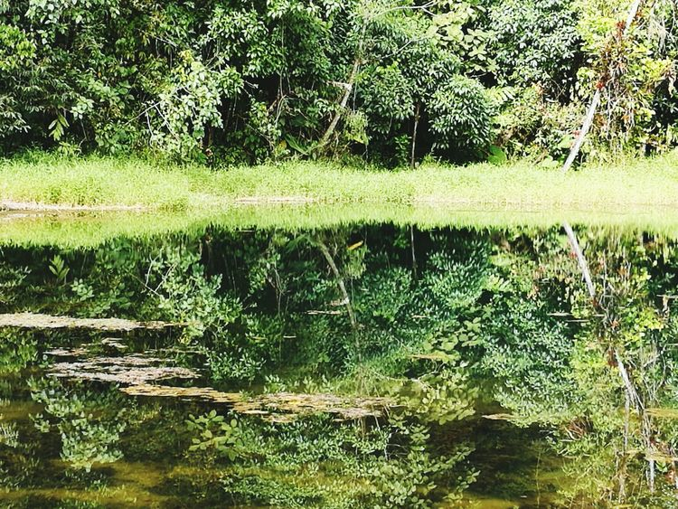 Reflection Water Nature No People Backgrounds Outdoors Lake Beauty In Nature Scenics Mountain Mountains Mountain Lake Pérez Zeldon Perez Zeledon Costa Rica Costa Rica❤ Costa Rica Y Su Naturaleza Nature Beauty In Nature Outdoor Photography
