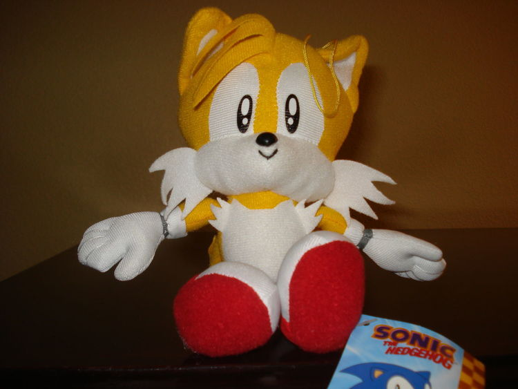 Animal Representation Arrangement Childhood Choice Close Up Close-up Creativity Cute Holding Home Interior Indoors  One Person Order Part Of Sega Sitting Sonicthehedgehog Still Life Studio Shot Stuffed Toy Tails Toy Variation Videogames