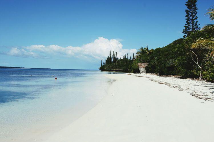 Plage île des pins Plage New Caledonia Nouvelle Calédonie Coconut Sea Beach Ile Des Pins Isle Of Pines Sand