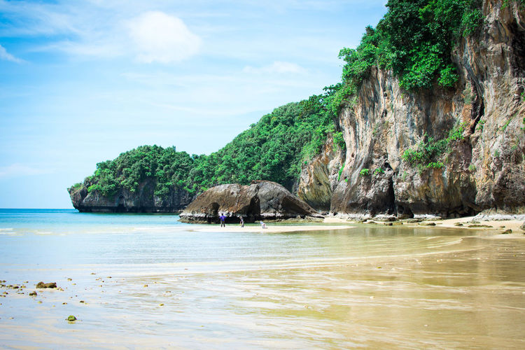 Beach Beach Beauty In Nature Land Nature Rock Scenics - Nature Sea Sky Solid Tranquil Scene Tranquility Tree Water Waterfront