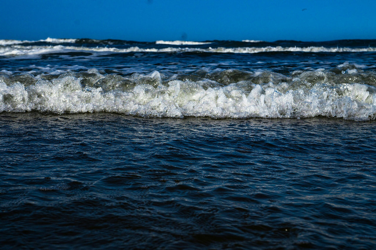sea, wave, water, motion, sport, scenics - nature, aquatic sport, surfing, beauty in nature, waterfront, land, beach, nature, blue, sky, day, horizon over water, horizon, outdoors, power in nature
