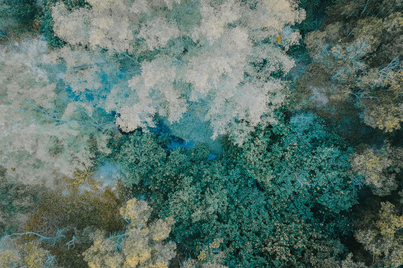 Abstract Architecture Backgrounds Beauty In Nature Blue Built Structure Close-up Day Full Frame Nature No People Outdoors Pattern Rock Rock - Object Rough Solid Textured  Turquoise Colored Wall - Building Feature Weathered